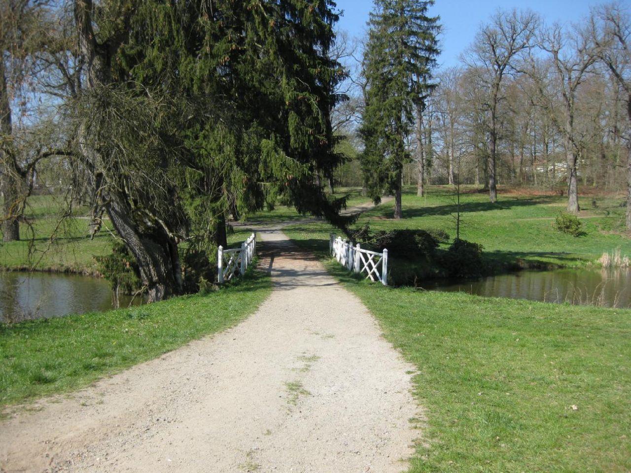 Dřevěná lávka mezi rybníky