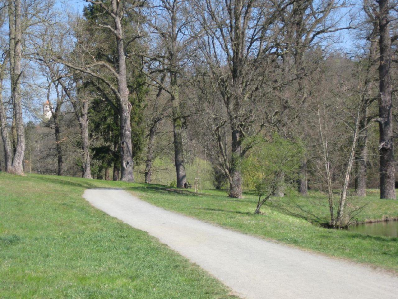 Cesta zámeckým parkem okolo rybníka